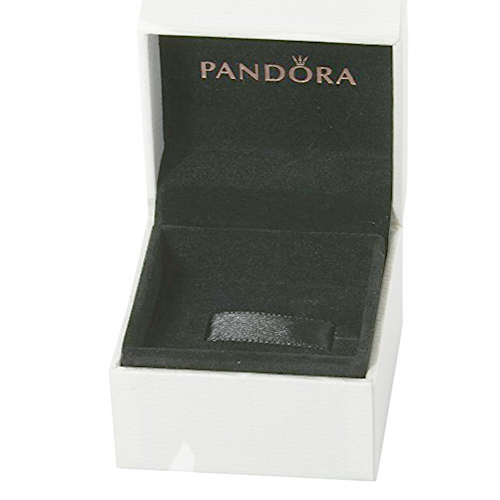 Pandora Packaging Box Open